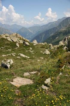 2009_07Chamonix_Mont_Blanc6833.JPG