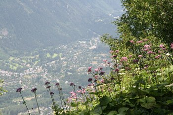 2009_07Chamonix_Mont_Blanc6952.JPG