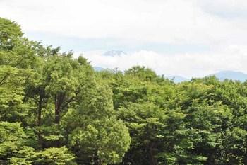2011_06Koufu1182.JPG