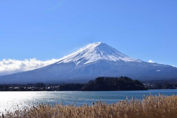 2014_01Fuji5514b.jpg