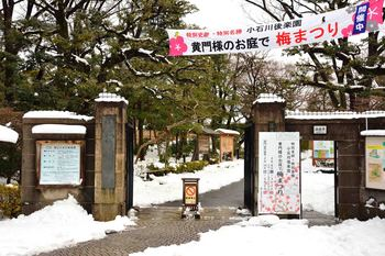 2014_02Koishikawa_korakuen6800b.JPG