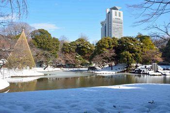 2014_02Koishikawa_korakuen6974b.JPG