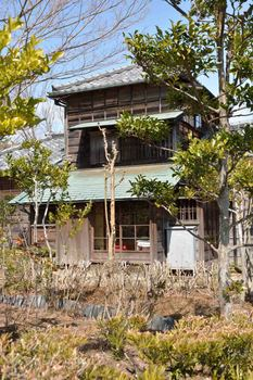 2014_03Meijimura7483b.JPG