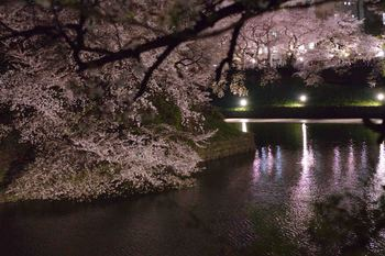 2014_04Chidorigafuchi6508b.JPG