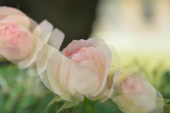 2014_05Ikebukuro2_0331b.JPG