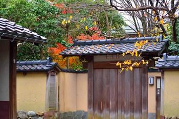 2014_11Kanazawa8542c.jpg