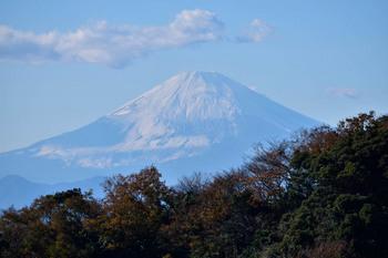 2014_12Kamakura0296c.jpg