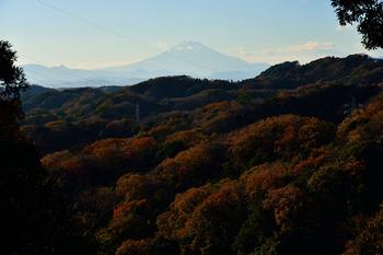 2014_12Kamakura0376c.jpg