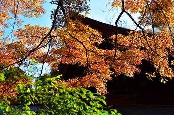 2014_12Kamakura0513c.jpg