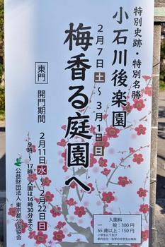 2015_02KoishikawaKorakuen1813c.jpg