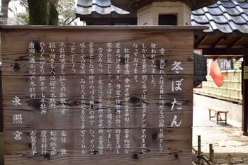 2015_02Ueno1700c.jpg