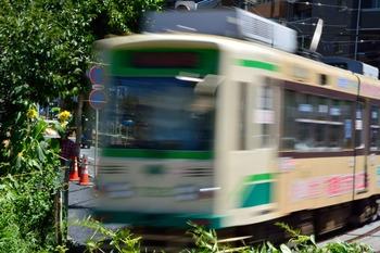 2015_07Kandagawa5690c.jpg